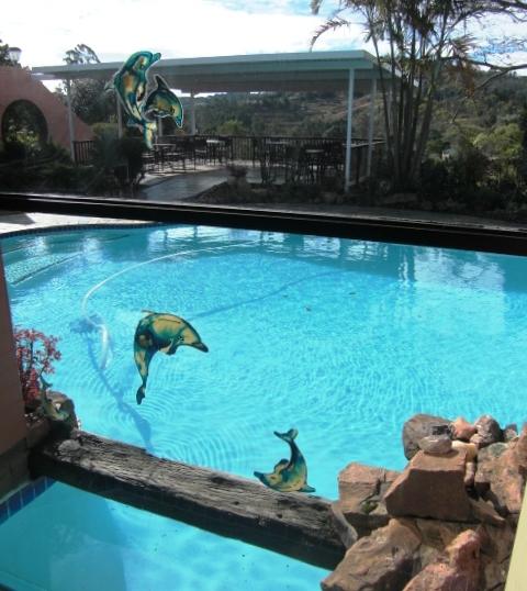across-pool-to-sundeck-2