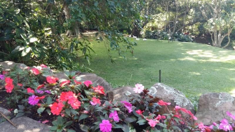 macnut-garden